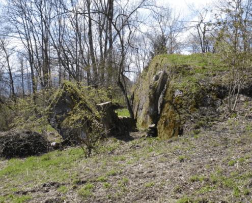 Rorensteine Meilen